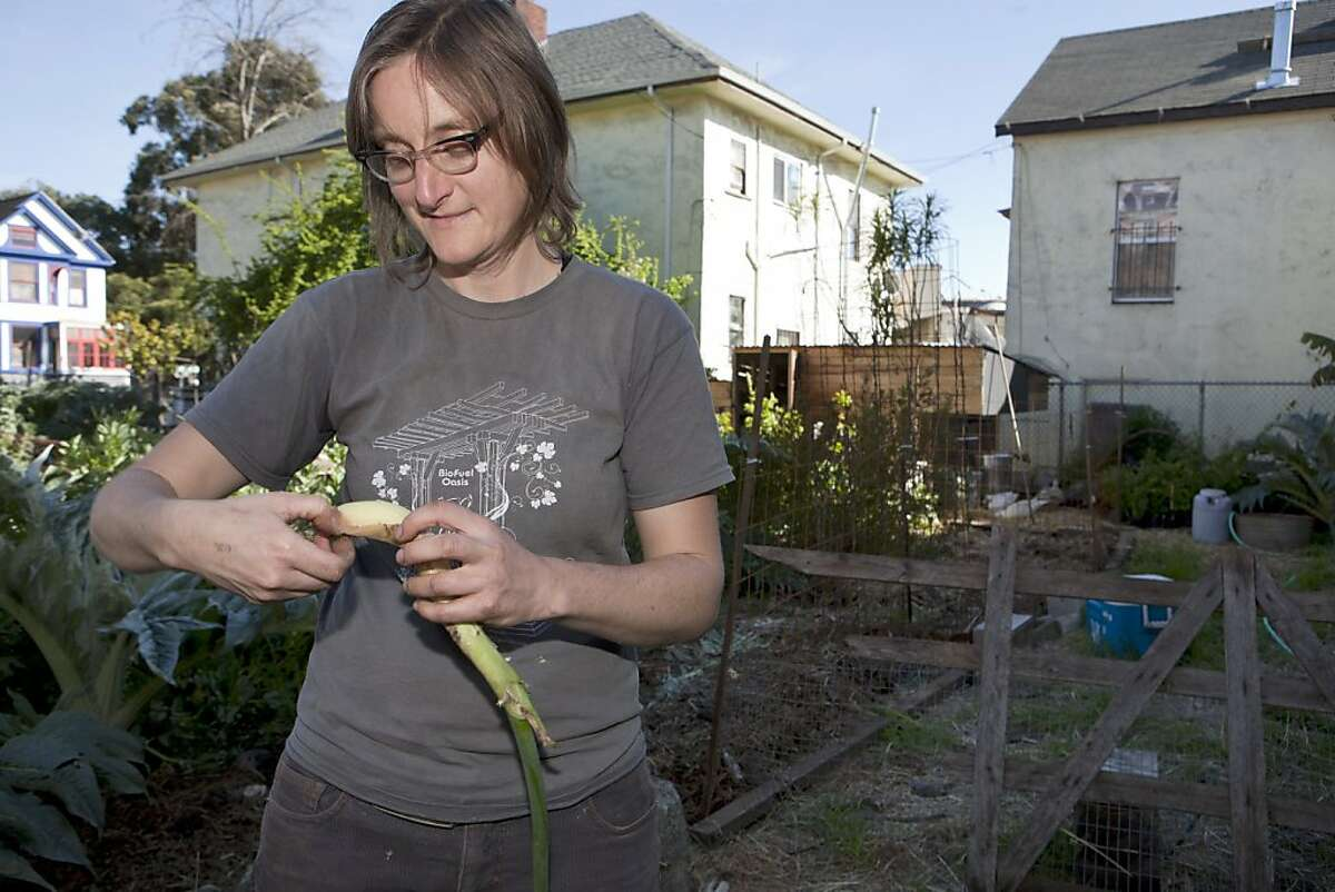 Author, farmer and Ghost Town Farm blogger, Novella Carpenter peels an onion in her backyard farm in Oakland, Calif. on Wednesday, March 30, 2011, Carpenter, cancelled her usual Wednesday Farmstand after Oakland City officials closed her down Tuesday stating that she needed a Conditional Use Permit for growing vegetables for $2500 in addition to the $2500 fine for noncompliance. Kat Wade / Special to the Chronicle