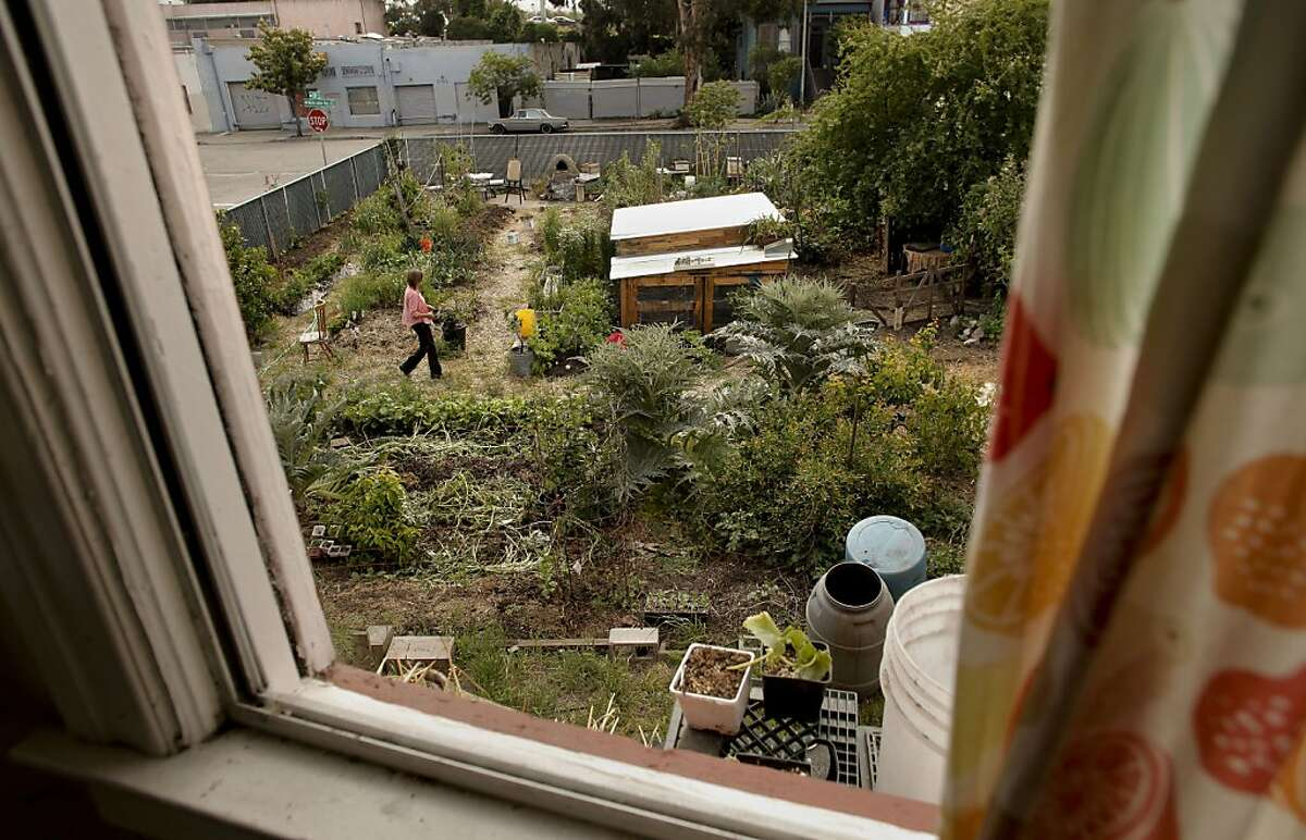 Novella Carpenter, at her GhostTown Farm on the corner of Martin Luther King Blvd. and 28th Street in Oakland, Ca., on Saturday May 7, 2011. For eight years Carpenter and her boyfriend have farmed on a vacant urban lot growing vegetables and raising ducks, goats and rabbits. The City of Oakland came by her farm and shut her down, saying she needed a $5,000 permit to grow vegetables there.