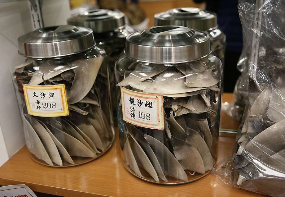 This Feb. 14, 2011 file photo shows shark fins being sold for $208 and $198 a pound at a store in San Francisco's Chinatown. A bill to ban the sale and possession of shark fins is moving through the Oregon Legislature. Similar bills are pending in California and Washington. A ban has been enacted in Hawaii. Backers hope to reduce demand for shark fin soup, which environmentalists say leads to the deaths of some 70 million sharks a year. Photo: Paul Sakuma, AP
