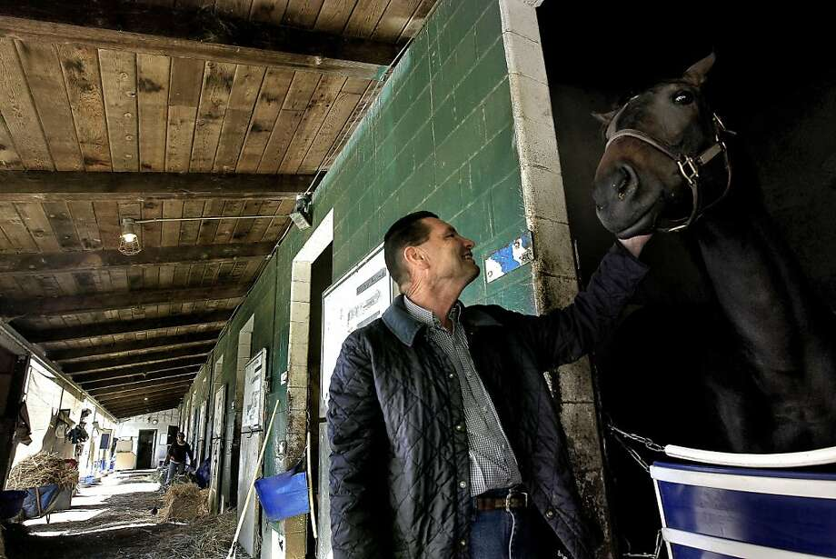 "Horse trainer, Jeff Bonde with, ""Going Mavericky"", at the Alameda County Fairgrounds stables, in Pleasanton, Calif. on Tuesday April 26, 2011. Bonde a long time trainer, will have a horse running in next months Kentucky Derby. Photo: Michael Macor, The Chronicle"