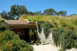 Native and non-native grasses cover the meadow roof of Ted Buttner and Rosemary Chang's home.  Cynthia Tanyan, of Mozaic Landscape Design,  sold them on a meadow roof that would blend visually with the open spaces of Pleasanton Ridge Regional Park across the fence line.
