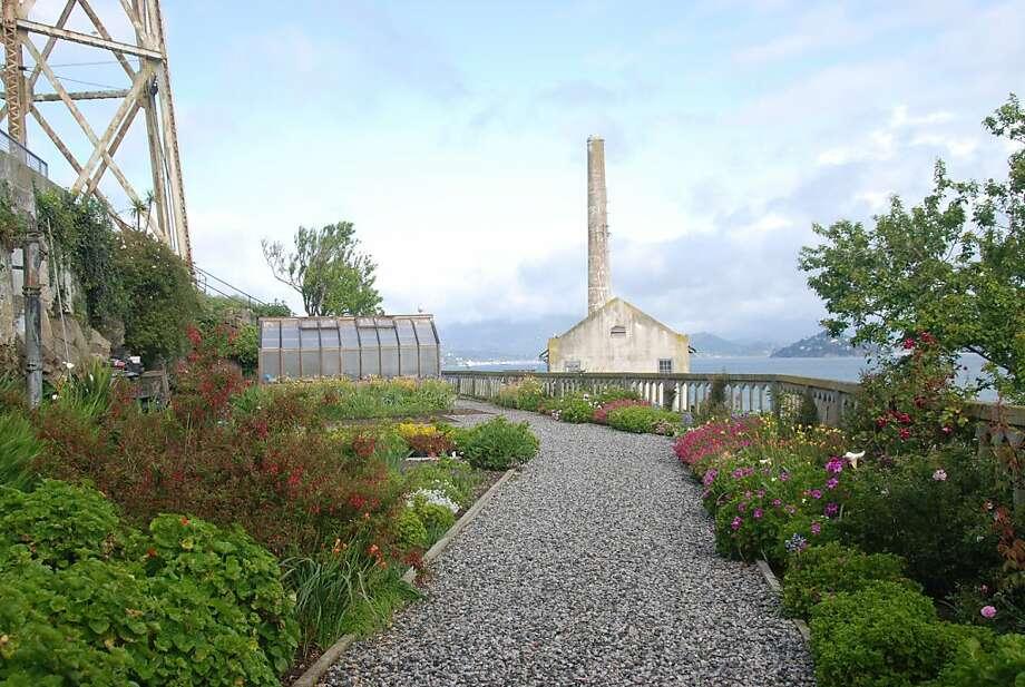 The gardens at Alcatraz Island. Photo: Jill K. Robinson, Special To The Chronicle