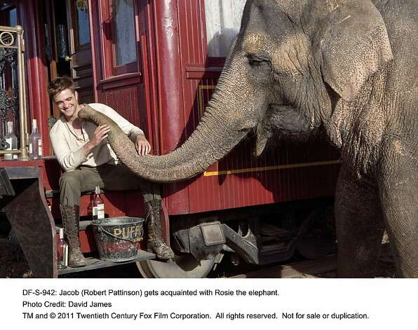 Jacob (Robert Pattinson) gets acquainted with Rosie the elephant. Photo: David James, Twentieth Century Fox