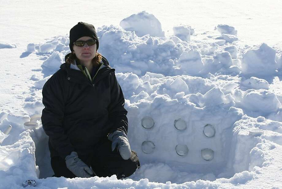 This undated handout photo provided by NOAA-STAD,  Soot Transport and Deposition Study, shows Trish Quinn of NOAA in a first snow pit. An international research team is in the land of snow and ice in search of soot. Though the Arctic is often pictured asa vast white wasteland, that can be deceiving. And carbon deposited there as a result of activities elsewhere can have a long-term impact on climate. Photo: AP