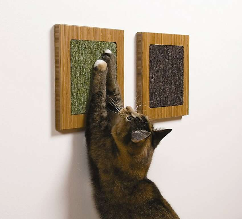 Cat scratcher Source: Uber