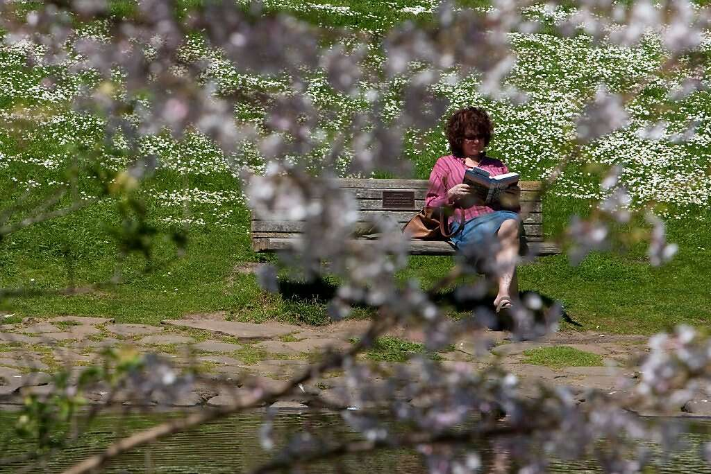 Marcia Lewana Of New Jersey Reads A Book In The Botanical Gardens In Golden  Gate Park
