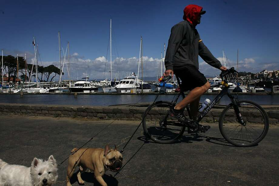 Micah Greer takes his dogs Pepe and Brodie out for the their daily walk past the West Harbor at the Marina Green on Thursday April 7, 2011 in San Francisco, Calif. San Francisco finally is moving forward with a decade-in-the-making project to renovate the marina, an incredibly complex undertaking that necessitates the relocation of hundreds of boats. Photo: Mike Kepka, The Chronicle