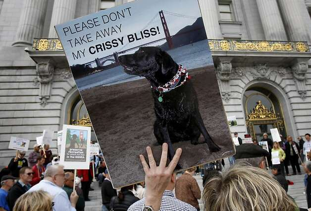 Sandra Shuhert  held a sign of her dog Otis at the rally. A large gathering of dog owners on the steps of San Francisco City Hall Monday April 11, 2011 preceded a meeting of the Board of Supervisors. The dog owners are upset with the Golden Gate National Recreation Area plan to cut or ban dogs in specific areas of the park. Photo: Brant Ward, The Chronicle