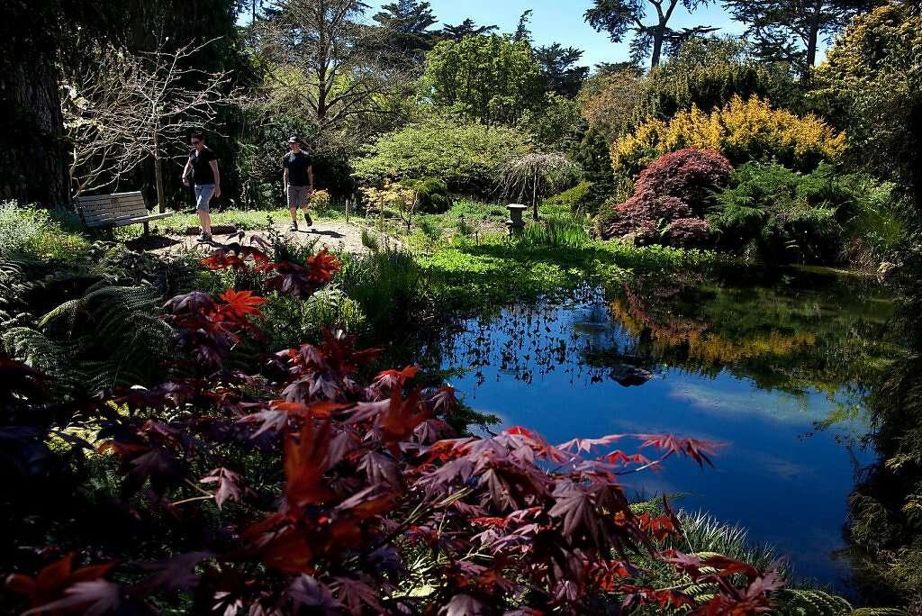 Karen And Malcolm Mars Of Hobart Tasmania, Australia Walk In The Botanical  Gardens In Golden