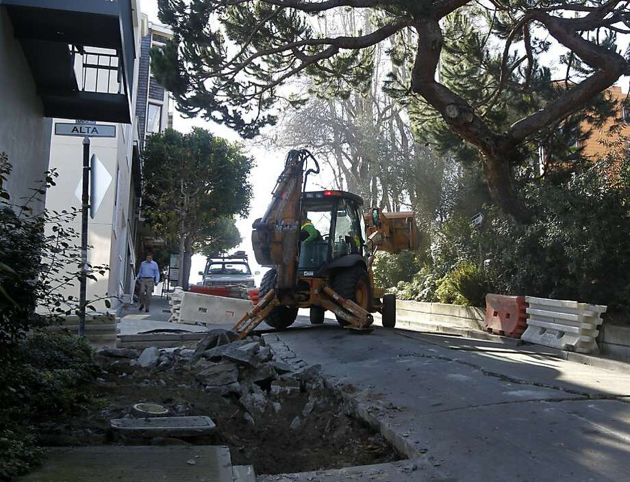 A construction crew reconfigures the road around a low-hanging branch (right) at Montgomery and Alta streets in San Francisco, Calif., on Tuesday, Jan. 25, 2011. The tree is a popular roost for the world-famous Wild Parrots of Telegraph Hill prompting officials to detour around it, rather than hacking the branch off. Photo: Paul Chinn, The Chronicle
