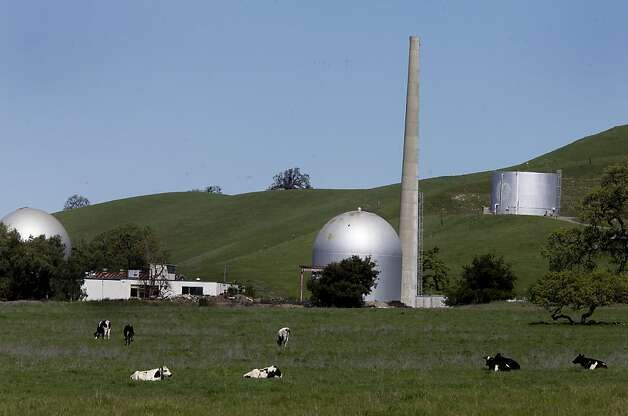 Cows graze in a field next to some old nuclear reactors, which are the rounded steel structures.  A water tank sits above right. An older nuclear reactor site, operated by General Electric, sits off highway 84 in the Sunol, Calif. area. Photo: Brant Ward, The Chronicle
