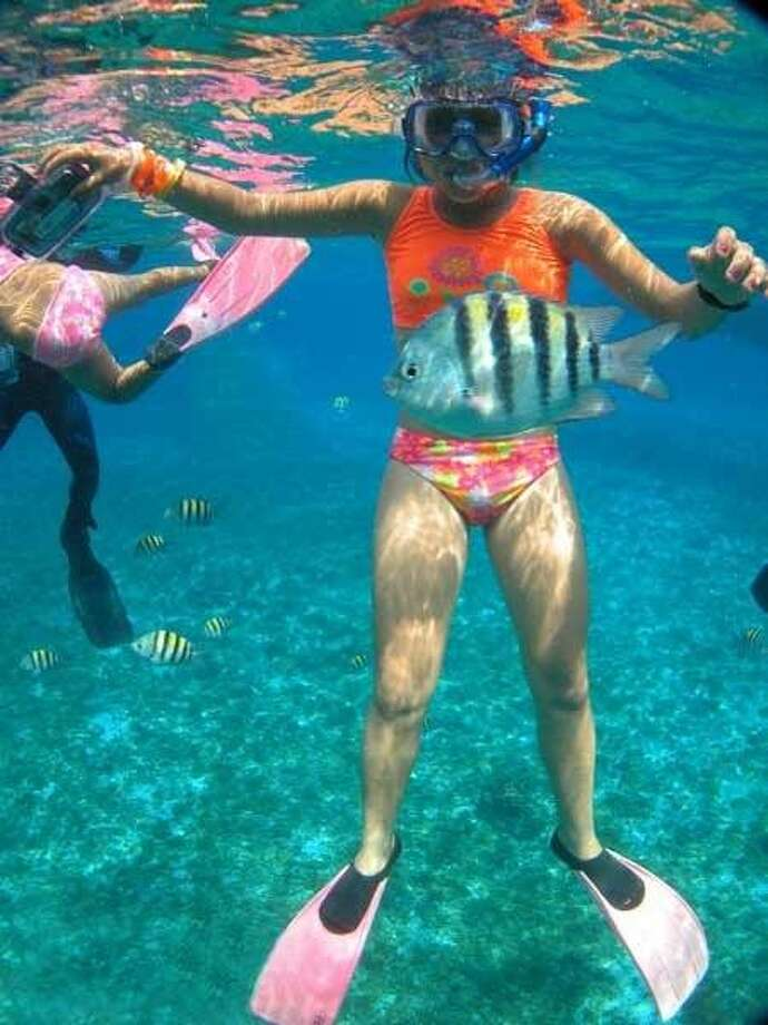 You needn't board a boat to swim with the fishes in Cozumel: Sergeant majors and queen angelfish swarm around pilings beneath seaside restaurants and shore diving is easy from several areas on the island's windward side. Photo: Courtesy Cozumel Press