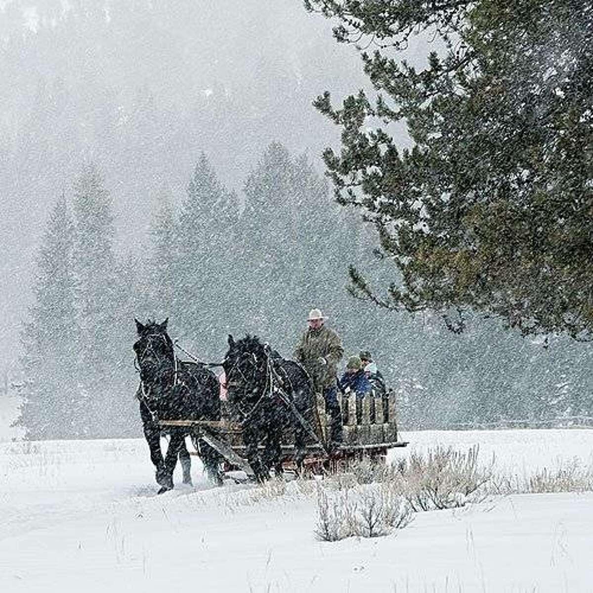 15. Montana
