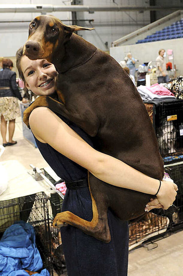 Risiko leaps into the arms of Karlee Howard, her AKC professional junior handler from Edmond, Okla., after Risiko's confirmation Best of Breed win Sunday, Oct. 17, 2010, during the Sooner State Kennel Club Dog Show at the Chisholm Trail Coliseum in Enid,Okla. Howard, 14, who has been handling different breeds since sixth grade, competed for Best in Show with her Doberman. Photo: Bonnie G. Vculek, Enid News & Eagle