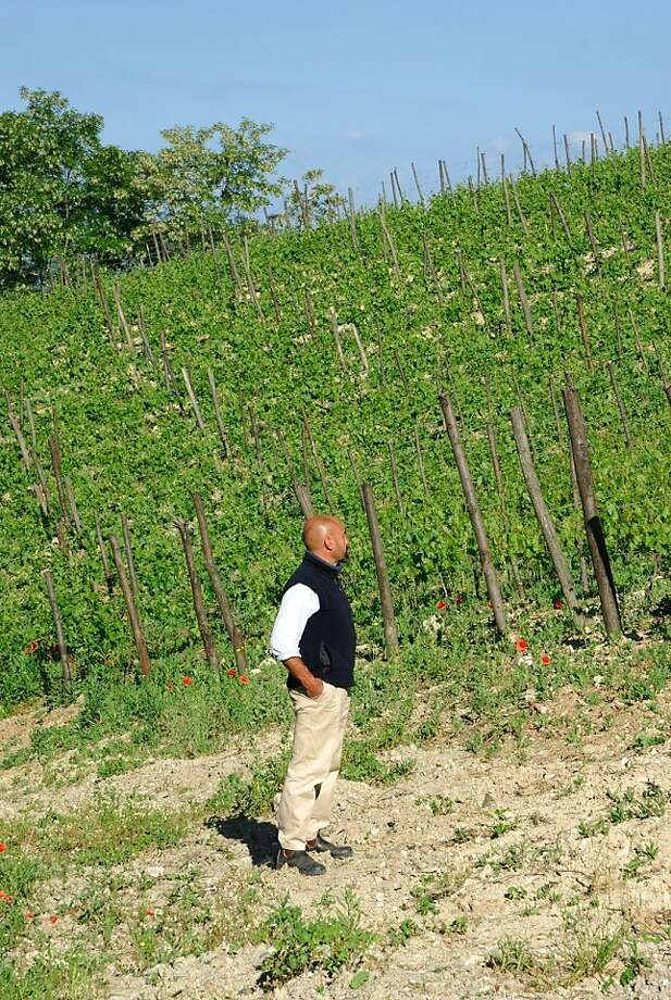 Giulio Armani, winemaker at La Stoppa and Denavolo, in the vineyards at the Denavolo estate, one of Emilia-Romagna's upcoming wineries. Armani makes some of the region's most promising wines.  Though it trails much of Italy, Emilia-Romagna is making inroads with its high-end wine culture -- moving past Lambrusco and offering wines that match its famous foods like Parmigiano and balsamic vinegar. Photo: Denavolo
