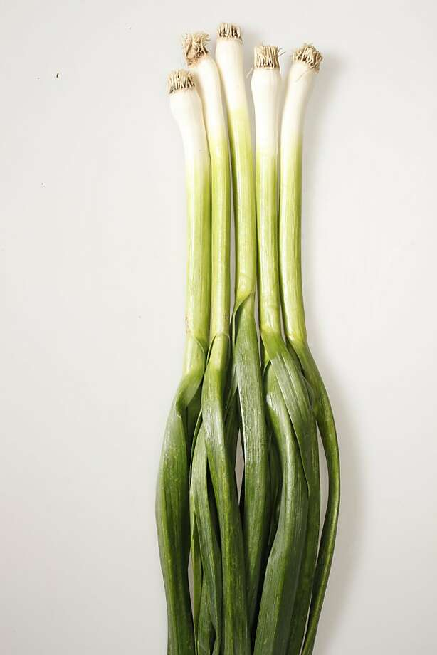 Green garlic. Photo: Craig Lee, Special To The Chronicle