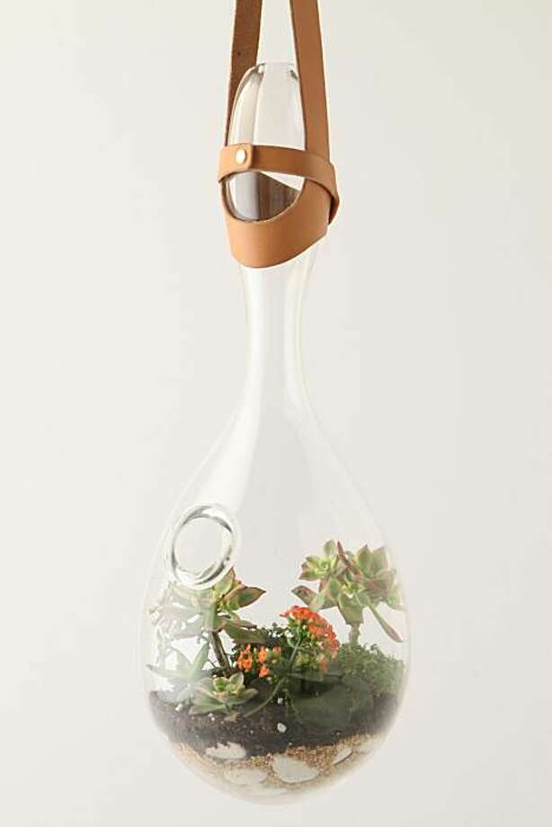 Translucent Droplet Terrarium Handcrafted in Portland, Oregon by Andi Kovel and Justin Parker of Esque Studios. Plants not included. $1,450.00 Photo: Anthropologie