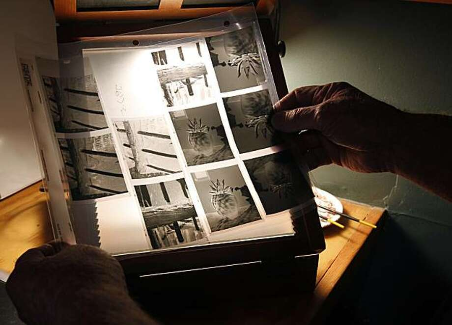 Kim Weston edits film negatives at his Wildcat Hill home in Carmel Highlands, Calif., on Monday, Feb. 21, 2011. Weston is a third generation photographer who's father is Cole Weston and is the grandson of legendary photographer Edward Weston. Photo: Paul Chinn, The Chronicle