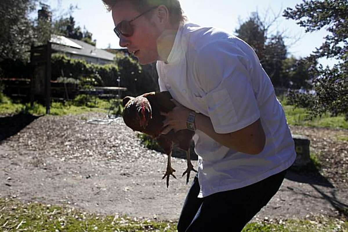 Thomas McNaughton, Chef at Flour+Water in San Francisco, one of six bay area rising star chefs collects a prop for a photo shoot at the Edible Schoolyard on the Martin Luther King Middle School campus on Tuesday Feb. 22, 2011 in Berkeley, Calif.
