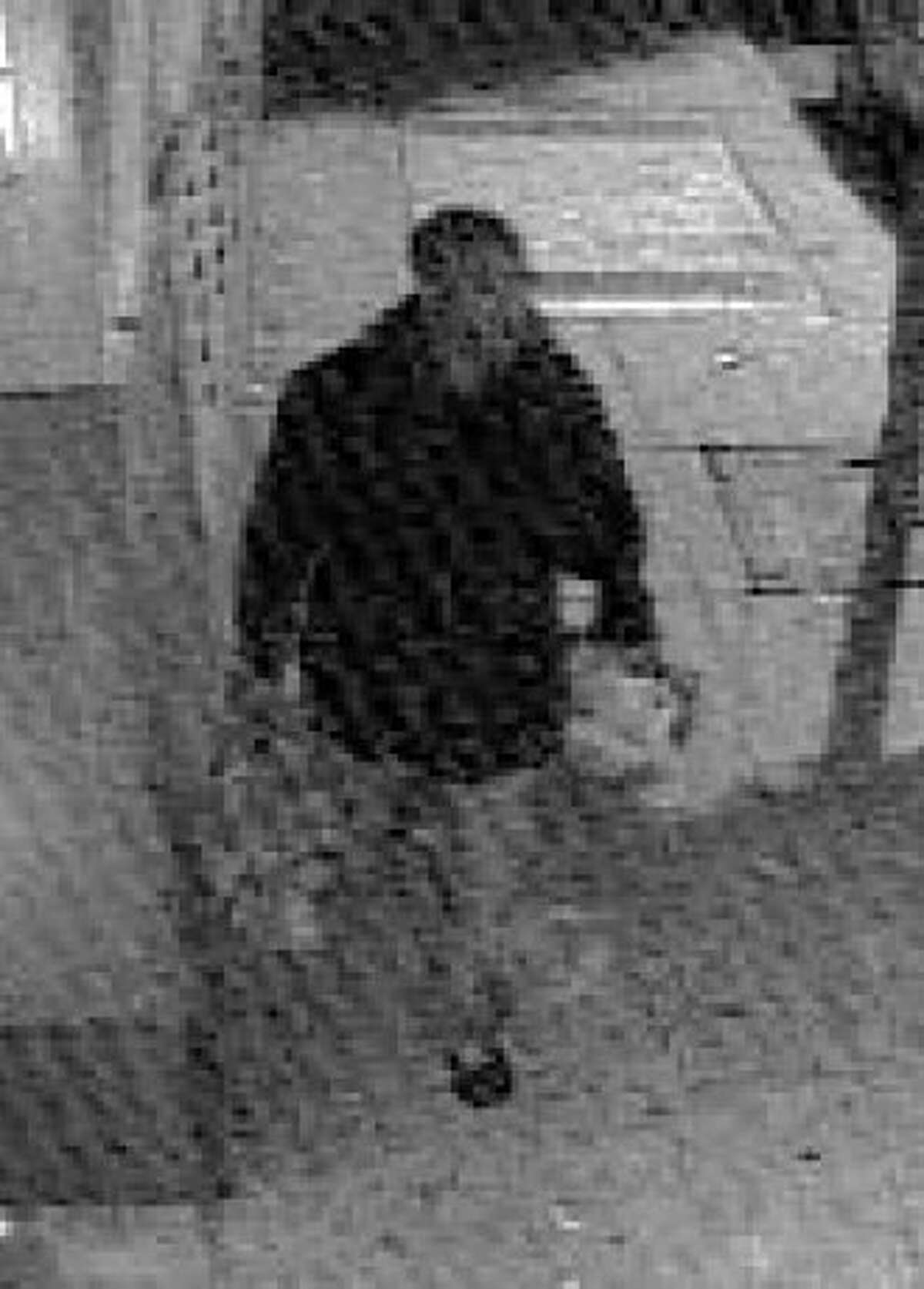 San Francisco police are asking the publics help in identifying a person of interest in two separate sexual assault cases which occurred along the 24th Street corridor in the City's Mission District. One incident occurred in November and another on today's date. In these cases both victims were attacked by a suspect identified as a black male, mid 30's, 5'9