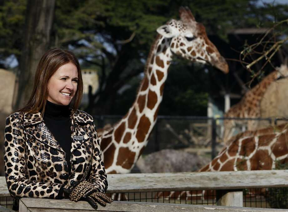 San Francisco Zoo director Tanya Peterson visits the giraffes the African Savanna exhibit in San Francisco, Calif., on Friday, Jan. 7, 2011. Photo: Paul Chinn, The Chronicle