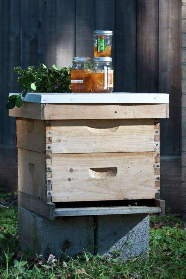 Honey in jars next to a bee hive, Nov. 29, 2011 in Houston, TX. (Eric Kayne/For the Houston Chronicle). Photo: Eric Kayne / © 2011 Eric Kayne