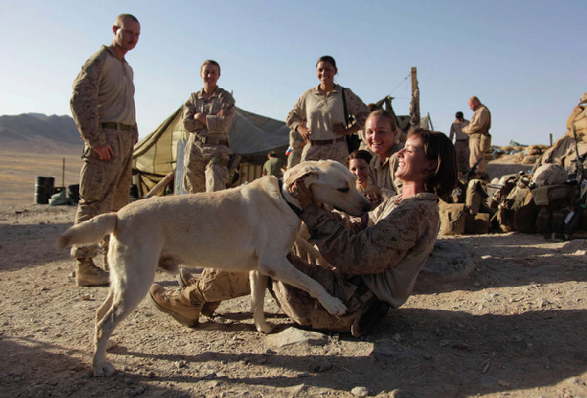 This Aug. 10, 2009, photo shows U.S. Marine Lance Cpl. Brigitte Ratzlaff, of Winter Haven, Fla., playing with Cpl. Clay, a bomb-sniffing dog, while waiting to go out on patrol in the Helmand Province of Afghanistan. (AP Photo/Julie Jacobson)