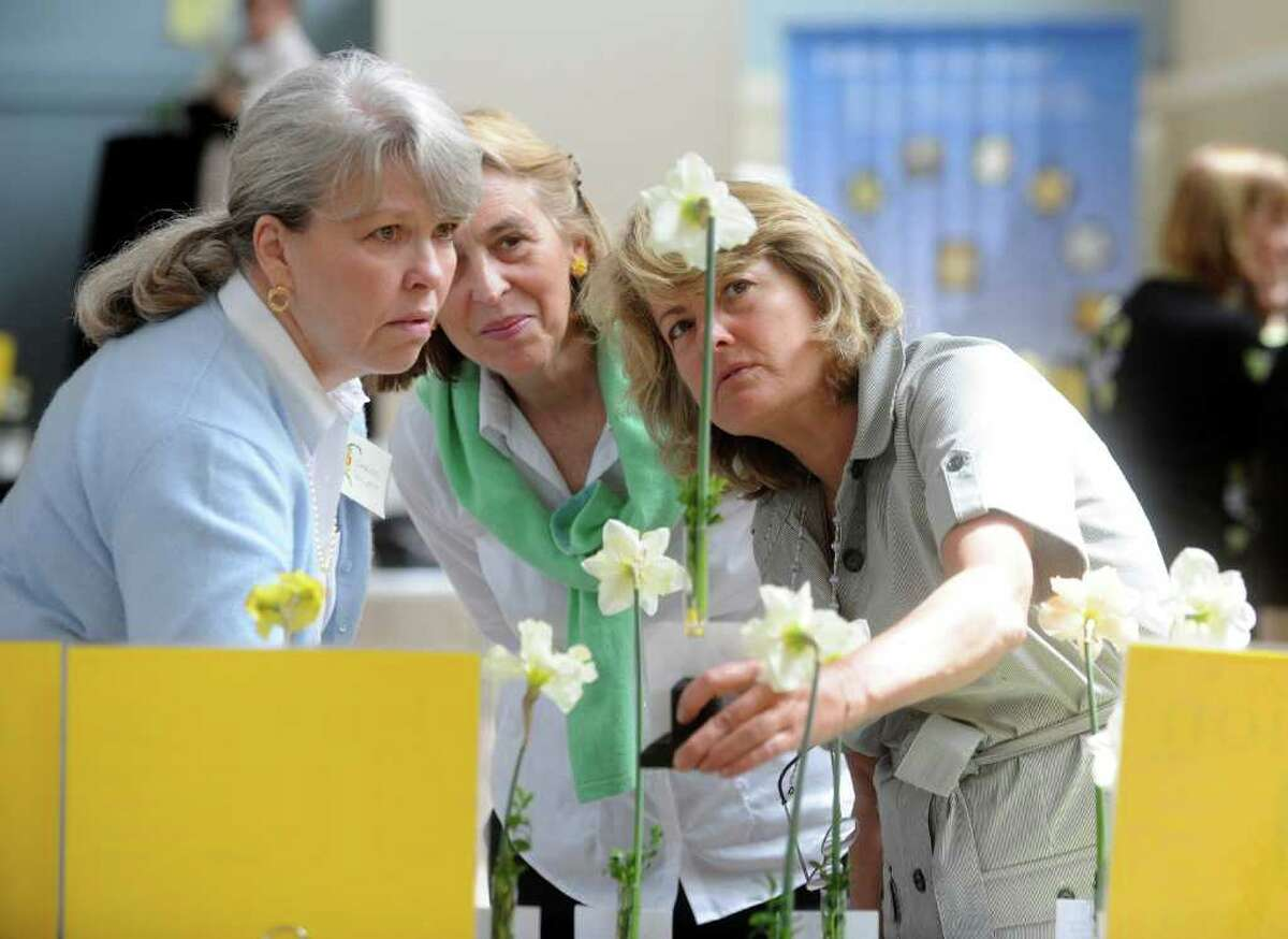 Judges Chriss Rainey, of Reston, Virginia, left, Gaby Hall, of Greenwich, and Lucy Rhame, of Alexandria, Virginia, inspect some daffodils at the 54th Annual Connecticut Daffodil Show, which was held recently at Christ Church Greenwich.