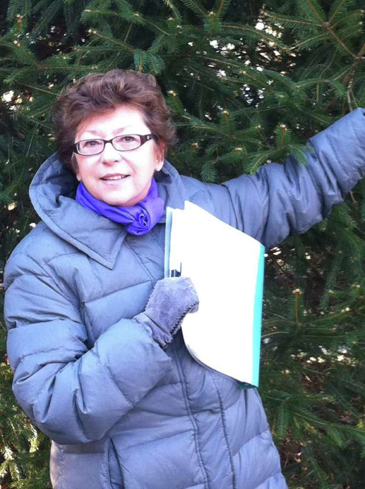 Director Joy Lenters gives the stage crew a hand with fresh evergreen trees that will create the backdrop for the live nativity during a recent rehearsal.