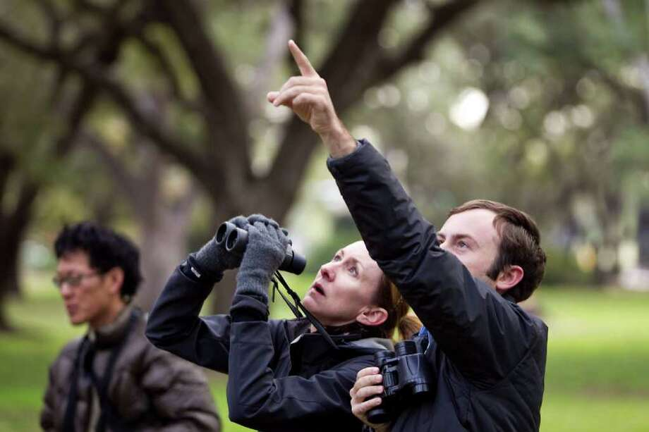 Ben Van Allen points out a bird to Linda Gilbert on the Rice campus. The group saw a downy woodpecker, a ruby crowned kinglet and a pine warbler. Photo: Nick De La Torre / © 2011  Houston Chronicle