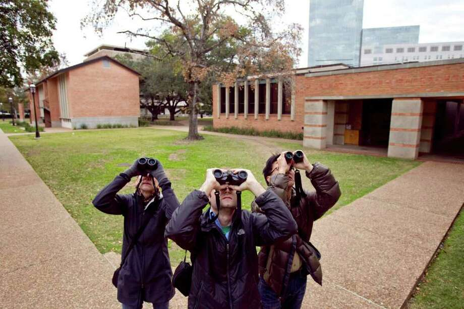 Linda Gilbert, left, Ben Van Allen, center, and Cin-Ty Lee, look at a tree  as they go birding Monday, Dec. 12, 2011, on the Rice University campus in Houston. Because of the colder weather there weren't as many birds in October and November. Photo: Nick De La Torre, Houston Chronicle / © 2011  Houston Chronicle