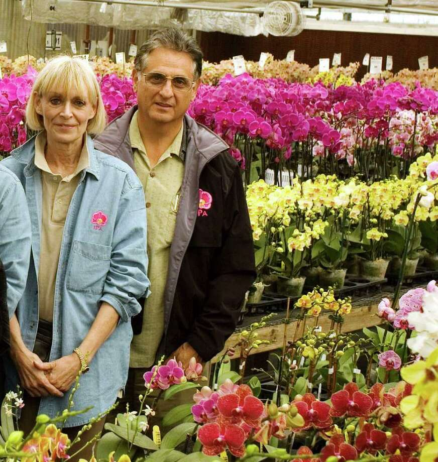 Carri Raven-Riemann and Carlos Fighetti, immediate past president of the American Orchid Society, in a greenhouse full of colorful Phalaenopsis orchids at Stone River Orchids. Photo: Contributed Photo