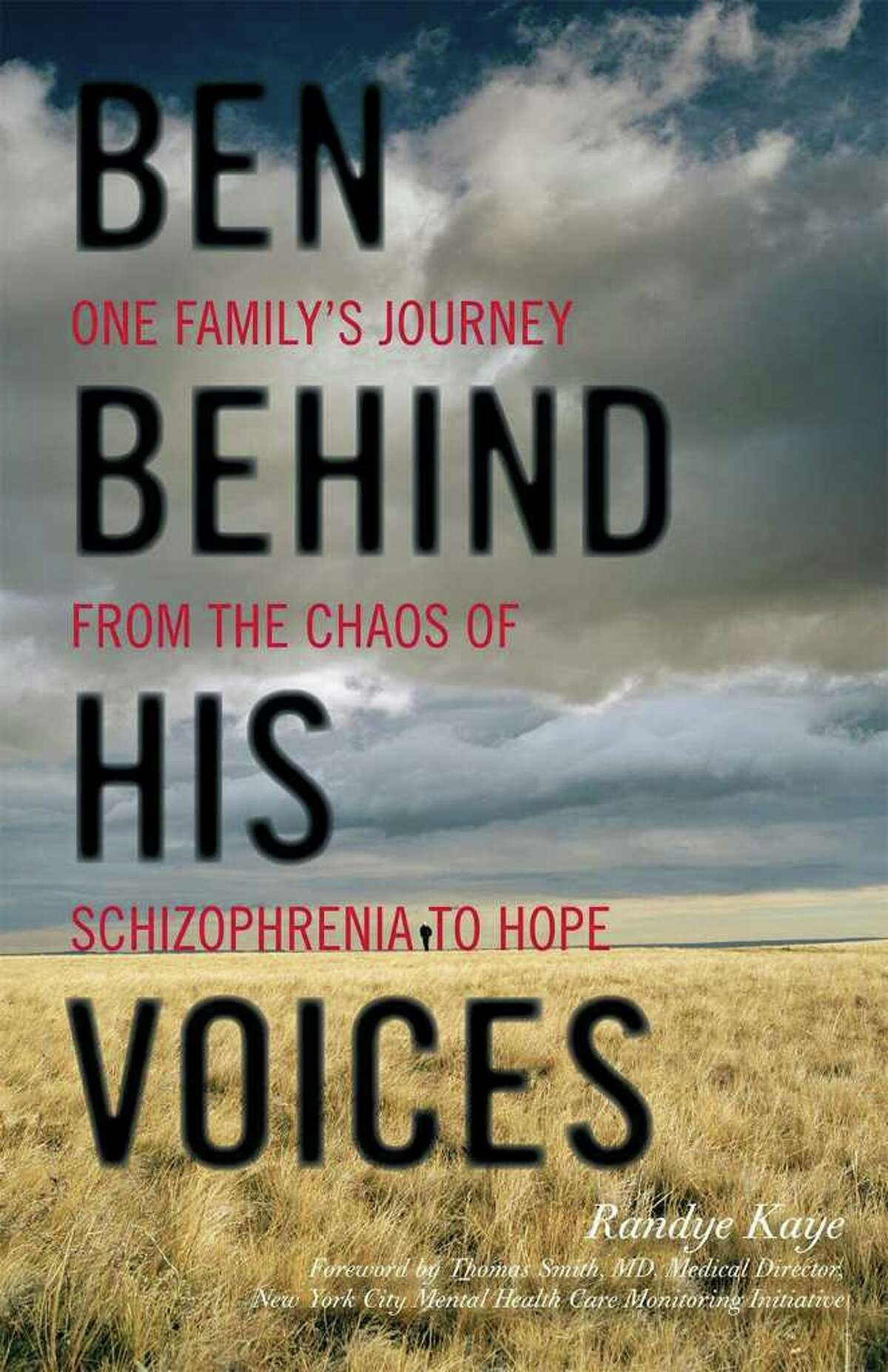 Radio personality and actress Randye Kaye of Trumbull is the author of a memoir about her struggles with her schizophrenic son,