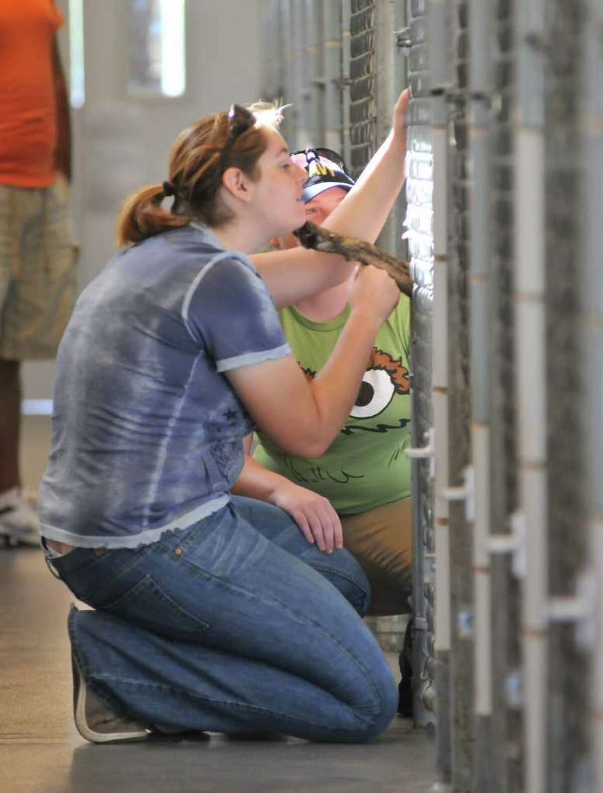 Kaitlyn Pulliam (left) and Amanda Atherton look at dogs up for adoption at the San Antonio Animal Care Services kennel.
