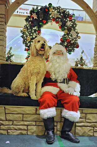 Spartan, a 2-year-old Goldendoodle, gets his photo taken with Santa at Colonie Center Tuesday, Dec. 13, 2011 in Colonie, N.Y.  (Lori Van Buren / Times Union) Photo: Lori Van Buren