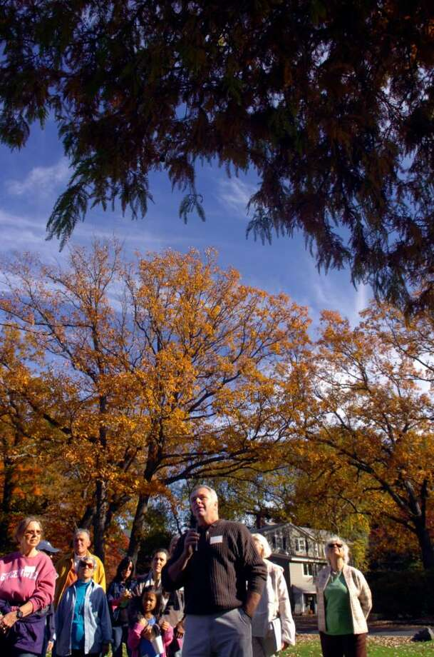 Old Greenwich, Oct, 25, 2009.  Bruce Spaman, the town tree warden, leads a walk though the historic parks of Greenwich. Today's walk was in Binney Park.  He was talking about the Bald Cypress tree in Binney Park. Photo: Helen Neafsey / Greenwich Time
