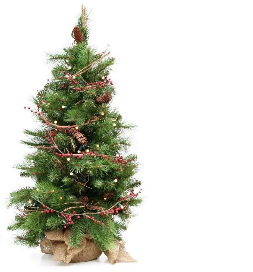 The Christmas tree has a storied past. (Fotolia) / Barbara Helgason - Fotolia