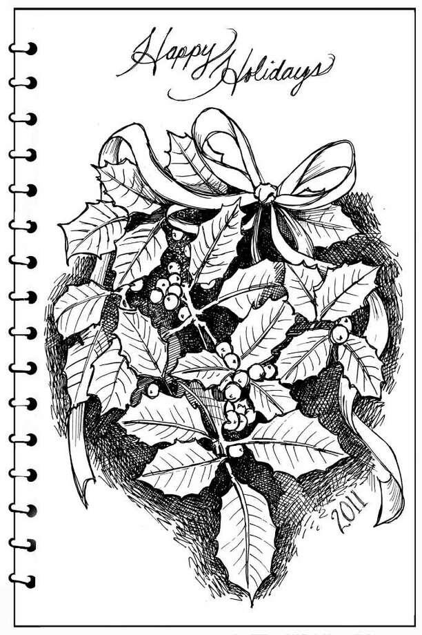 American holly (Ilex opaca) by Carol Coogan