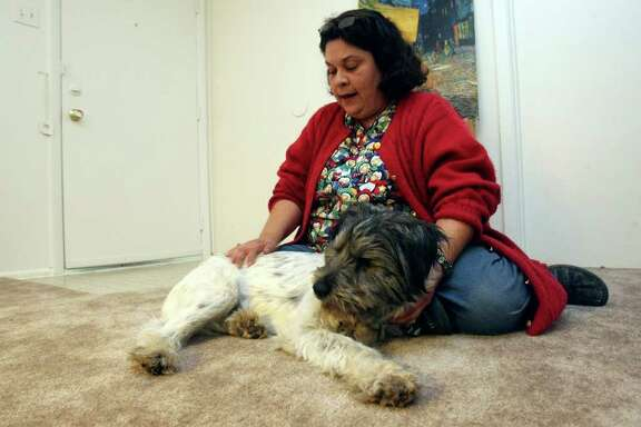 METRO: Belinda Gutierrez was reunited with her dog Stevie Oedipus Wonder after ACS volunteers found a listing for him on Craigslist.  HELEN L. MONTOYA/hmontoya@express-news.net