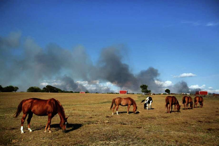 June 20, 2011 | Wildfires loom in the distance as horses graze in Stoneham. Photo: Mayra Beltran, Chronicle / © 2011 Houston Chronicle