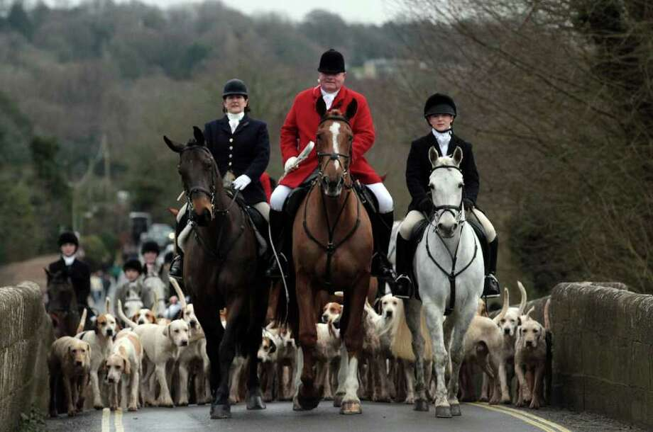 Jonathon Seed, Joint Master and Huntsman with the Avon Vale Hunt, leads the hounds and fellow riders for their traditional Boxing Day hunt, on December 26, 2011 in Lacock, England. Photo: Matt Cardy, Getty / 2011 Getty Images