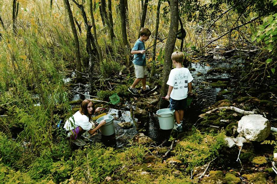 A group of children explore a stream during an outing at an Outdoor Family Workshop in Georgetown. Photo: COURTESY TEXAS PARKS & WILDL / Chase A. Fountain, TPWD
