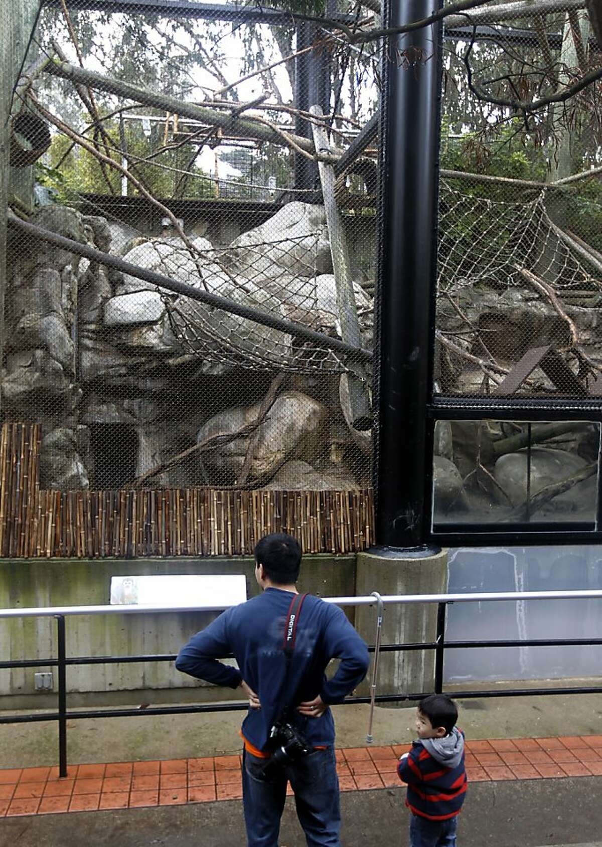 Visitors look at the squirrel monkey exhibit at the San Francisco Zoo in San Francisco, Calif. on Friday, Dec. 30, 2011. Zoo officials discovered a hole cut was in the fence of the exhibit and one of the primates named Banana-Sam missing when keepers arrived for work in the morning.