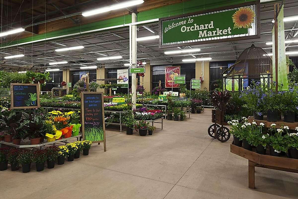 Orchard suppy is implementing a new look for their stores. This is an example of the updated garden department.
