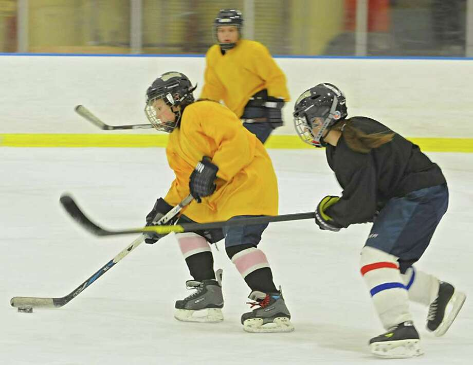 The Albany Academy for Girls ice hockey team practices at the Albany Academy field house Tuesday, Jan. 3, 2012 in Albany, N.Y. (Lori Van Buren / Times Union) Photo: Lori Van Buren