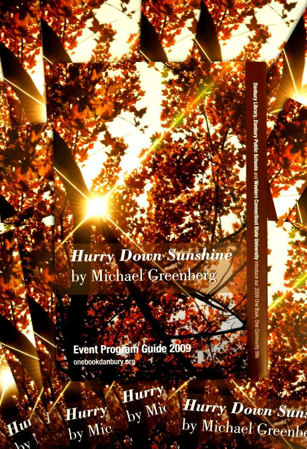 The bookcover of Hurry Down Sunshine, which was announced as the choice for discussion at the One Book, One Community press conference held at the WCSU Hass Library in Danbury on Aug.24, 2009.