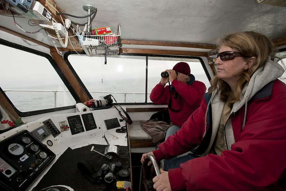 Nancy Black (right) navigates the Sea Wolf II while Tony Lorenz keeps a lookout for whales in the open waters.  The abundance of krill in the Monterey Bay has led to an unusually high number of Humpback whales, Blue Whales and other porpoises in this area and are seen here on Thursday, July 22, 2010 off the coast of Monterey, Calif. Photo: Chad Ziemendorf, The Chronicle
