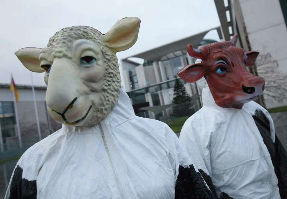 Activists rally in front of the Chancellery in Berlin, Germany on Jan. 5 for a law to ban the kosher and halal method of butchering animals, which calls for slitting the throat while an animal is alive and letting its blood drain. Photo: Sean Gallup, Getty Images / 2012 Getty Images