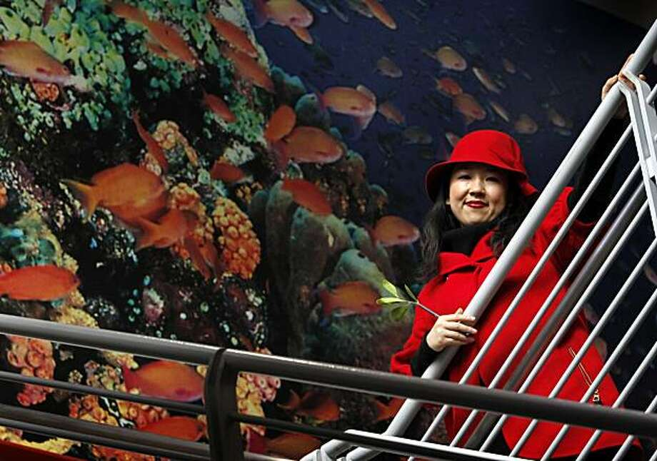 Graphic artist Yiying Lu visits the Steinhart Aquarium at the Academy of Sciences in San Francisco, Calif., on Thursday, Dec. 9, 2010. Lu designed the Twitter Fail Whale, which has become an internet sensation. Photo: Paul Chinn, The Chronicle