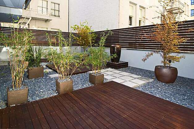 The garden at 723 Taylor for the real estate cover. Photo: Michael Manganaan